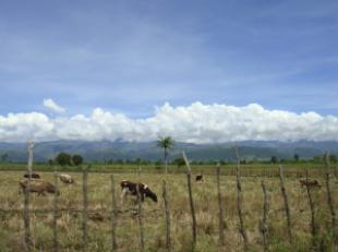 View of the Cordillera Central mountain range near Las Charcas